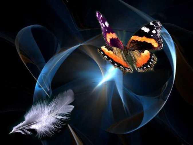 La vita, un sogno con le ali